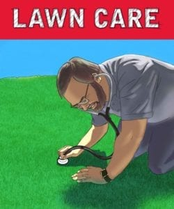 Red Shovel Lawn Care