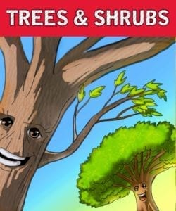 Red Shovel Trees & Shrubs