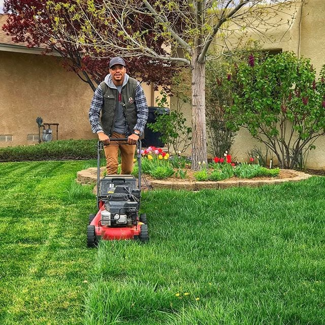 Lawn Care Company Albuquerque NM